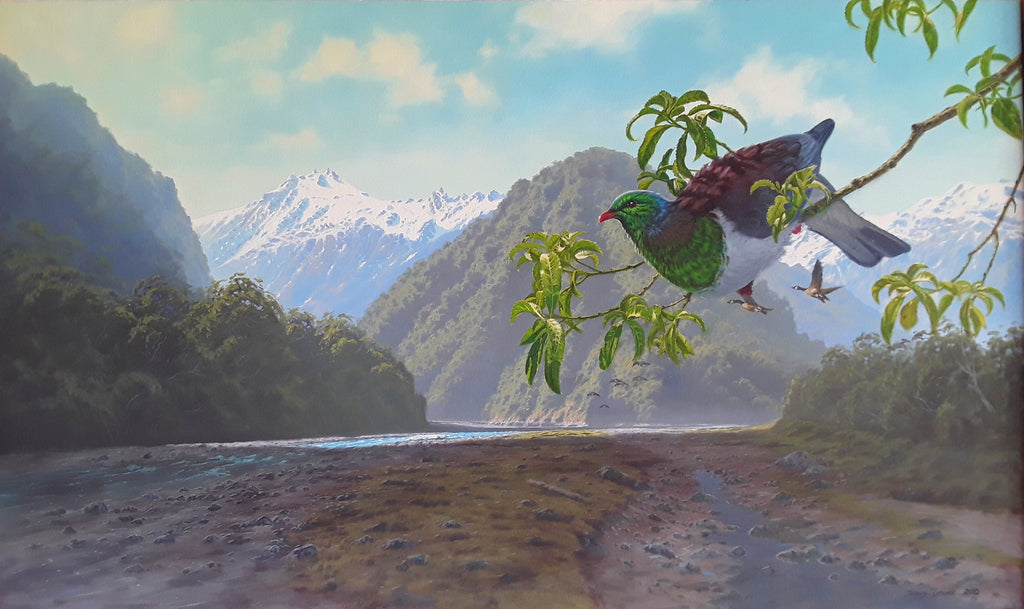 Johnny Groome- Franz Josef River, Fox Glacier and Kereru