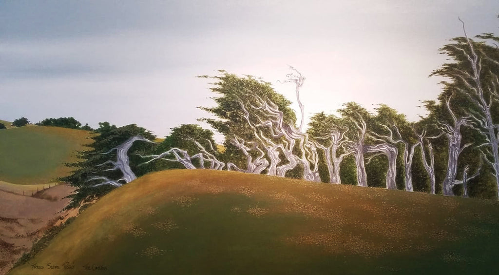 Rata Koning-Trees at Slope Point