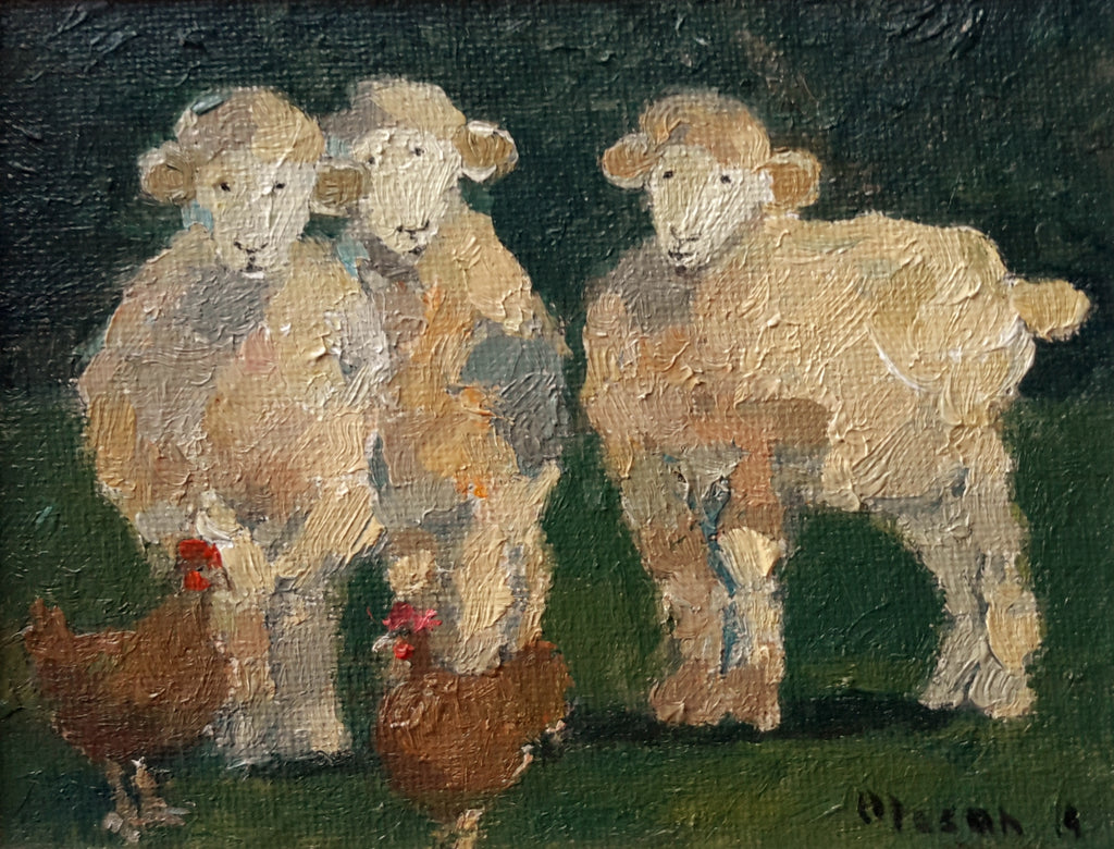 Malcolm Mason-Sheep near the Chicken pen