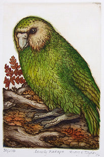 Mary Taylor-Lonely Kakapo