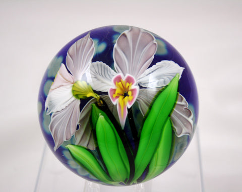 Mayauel Ward Art Glass Tropical Orchid Paperweight
