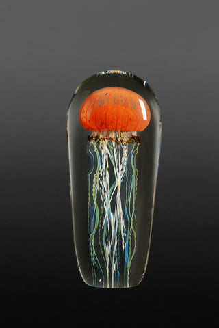 "Satava Pacific Coast 10"" Orange Jellyfish"