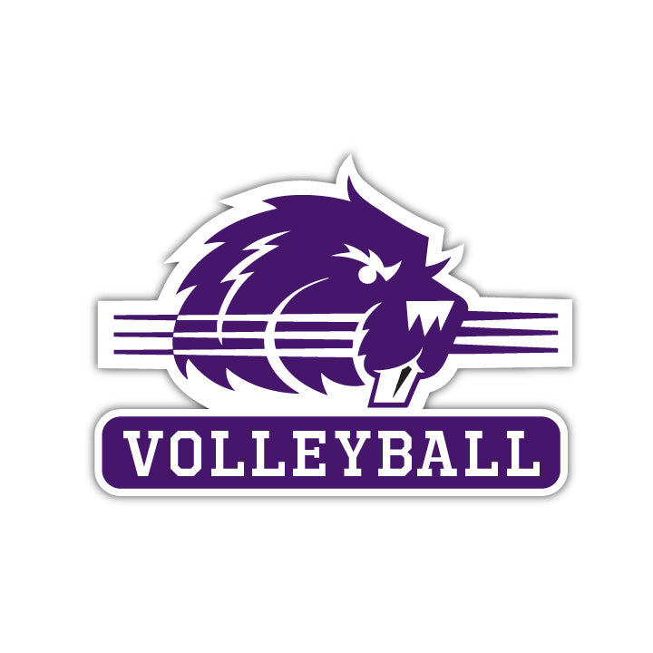 Bluffton Volleyball Decal - M12