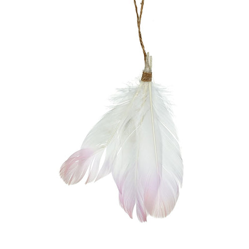 Pink Feather Hanger