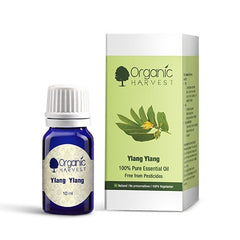 Pure Essential Oil - Organic Harvest Ylang Ylang Pure Essential Oil 10ml