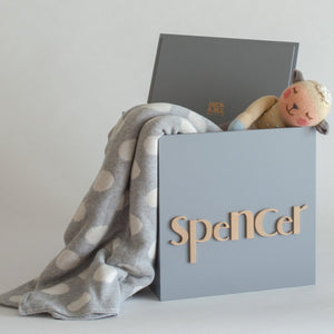 Light Grey Toy Box