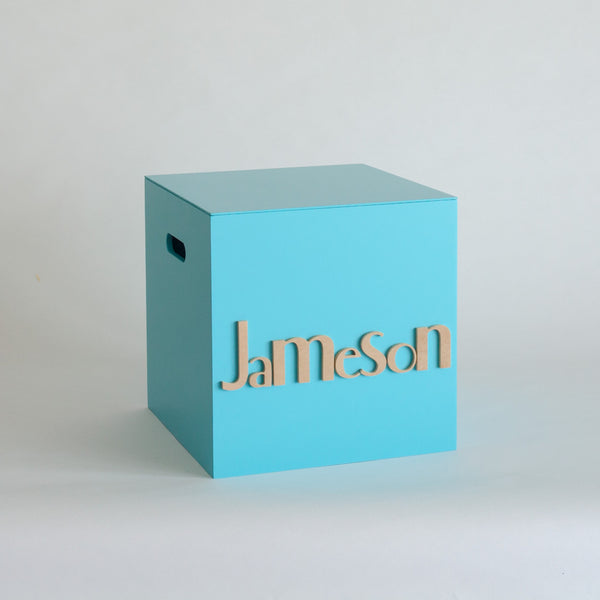 Teal Toy Box