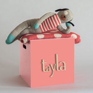 Salmon Toy Box