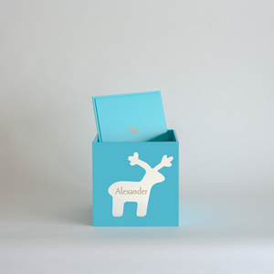 Teal Christmas Box