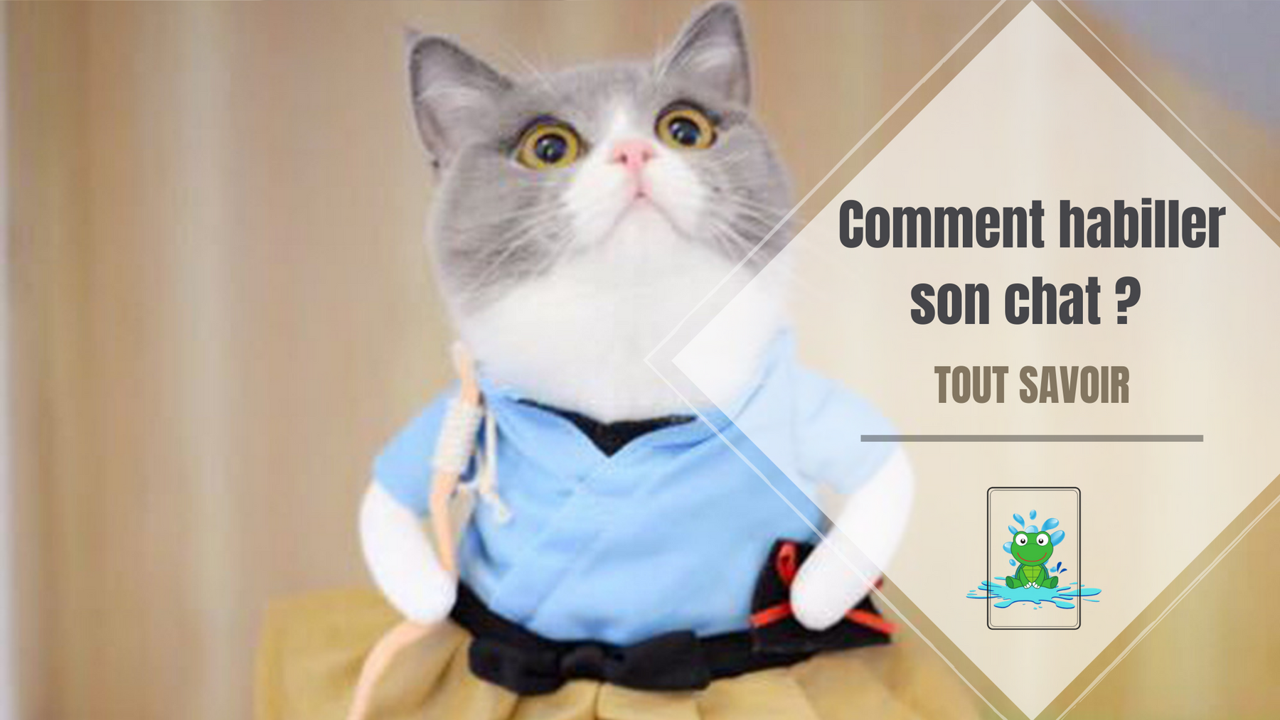 Comment habiller son chat ?