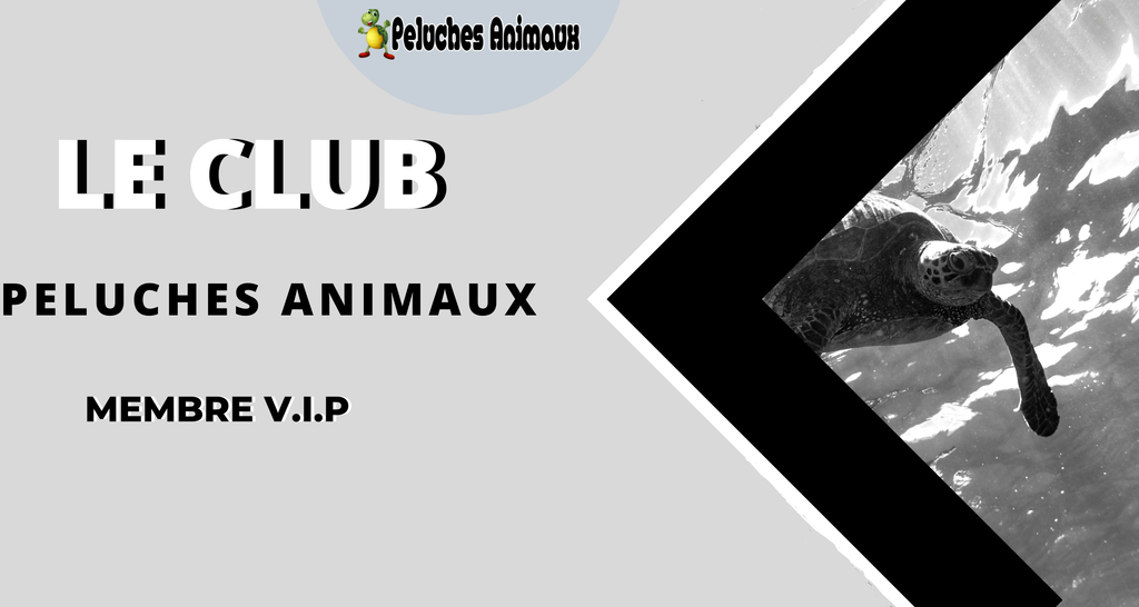 Club peluches animaux