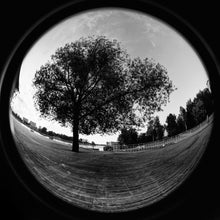 "Load image into Gallery viewer, MC-Zenitar 8mm f/3.5 ""fish-eye"" lens in Nikon Mount"