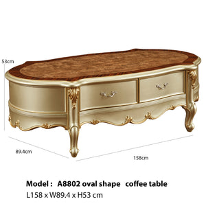 Shurlup Oval shape coffee table.
