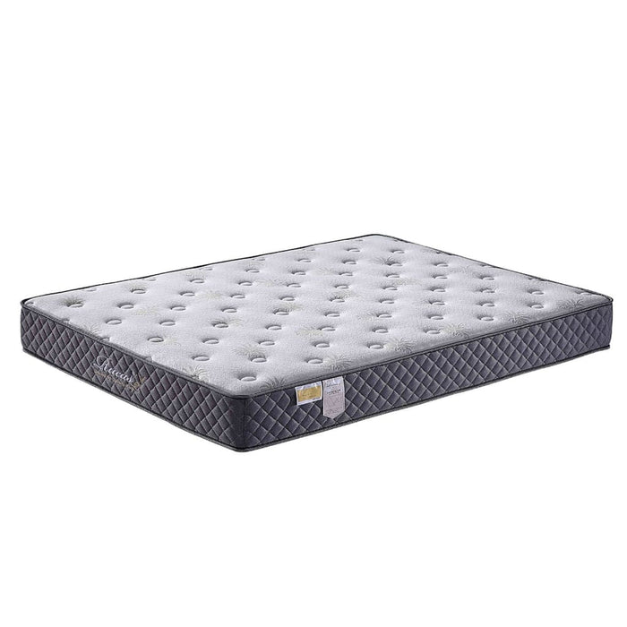 Sears Pain Relief Memory Foam