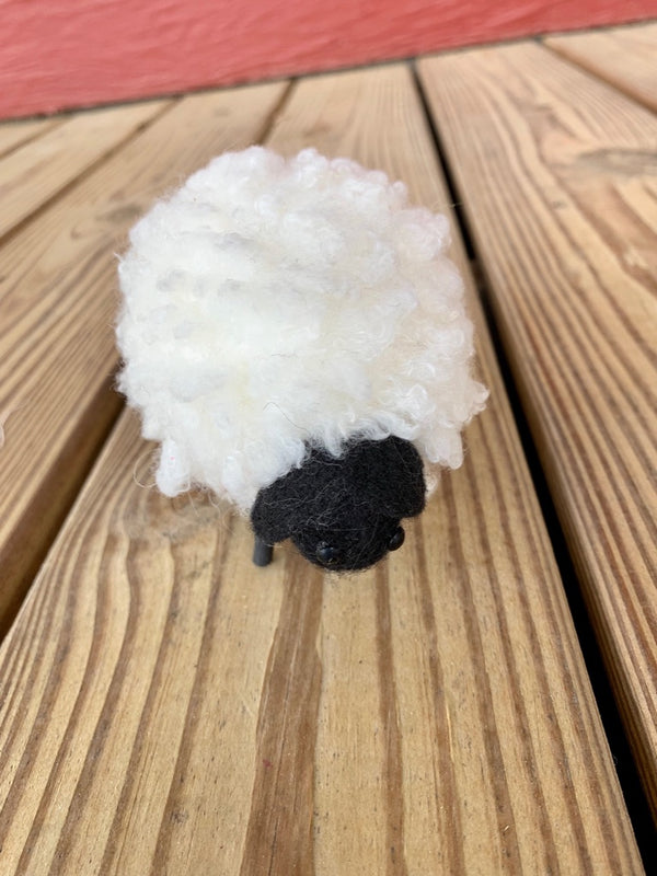 Small Curly Wooly Sheep