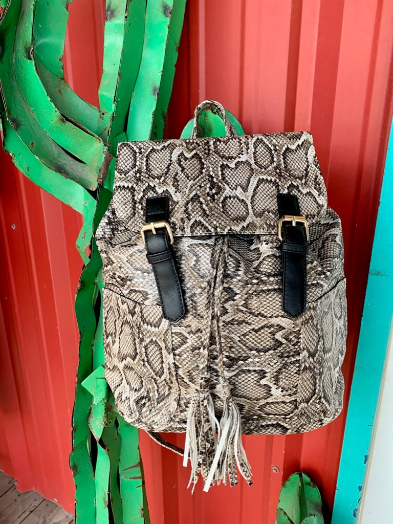 The Backpack Python