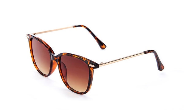 Shell Sunglass Thin