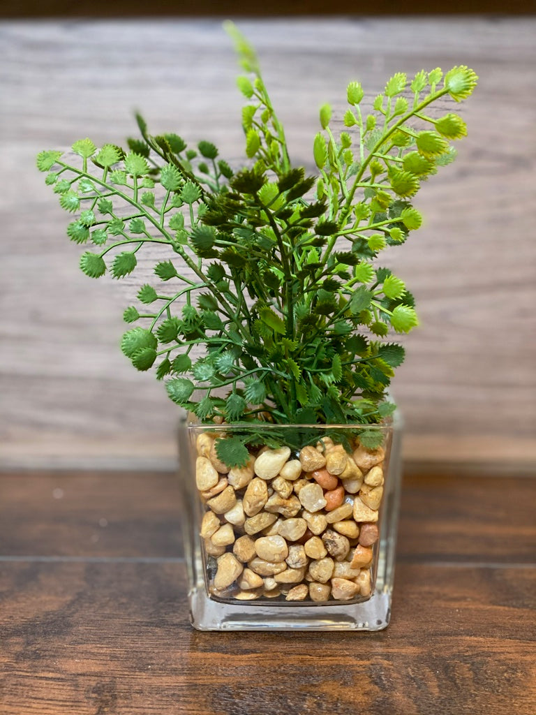 7 inch Ferns in Square Glass Vase with Pebbles Leaves