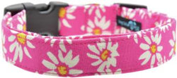 Small Collar Pink Daisy