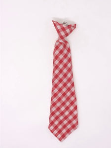 Cherry Gingham jr. MEDIUM