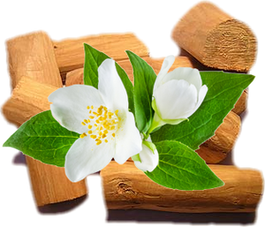 Sandalwood and Jasmine - Handmade Organic Soap