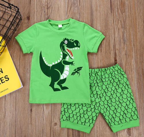Boys Dinosaur Short Set