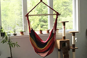 hot colour Brazilian hammock chair