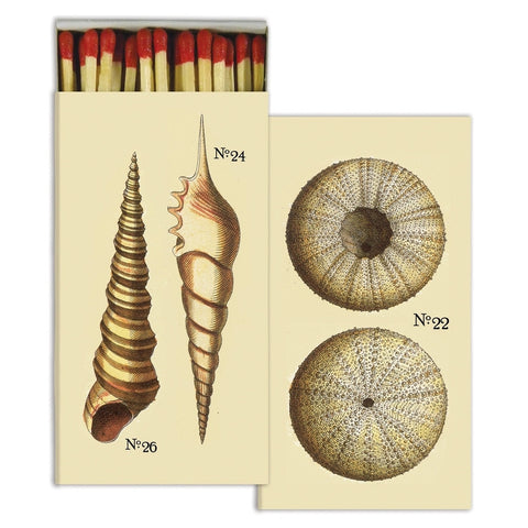 Matches - Nautical Seashells