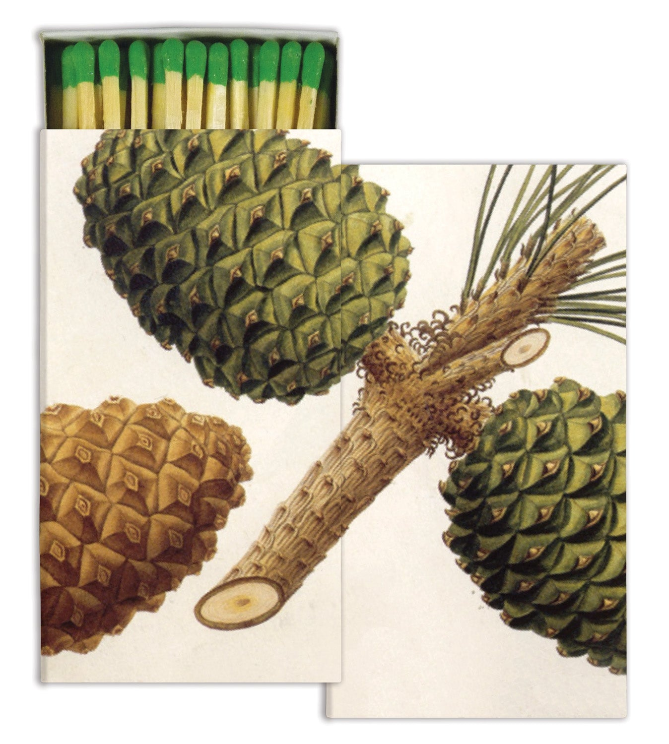 Matches - Pinecones