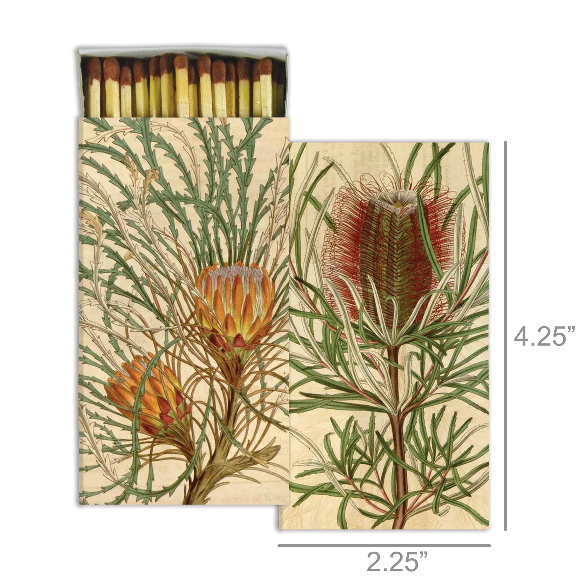 Matches - Protea