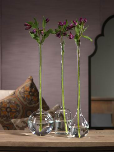 Long Neck Vases - CARLYLE AVENUE