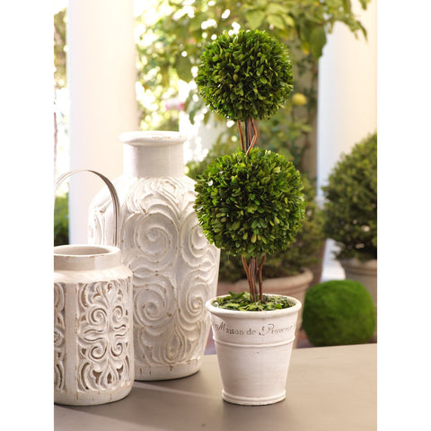 Maison de Provence Potted Boxwood Topiary