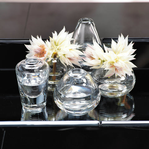 Arabella Assorted Glass Vases - Clear - Set of 5