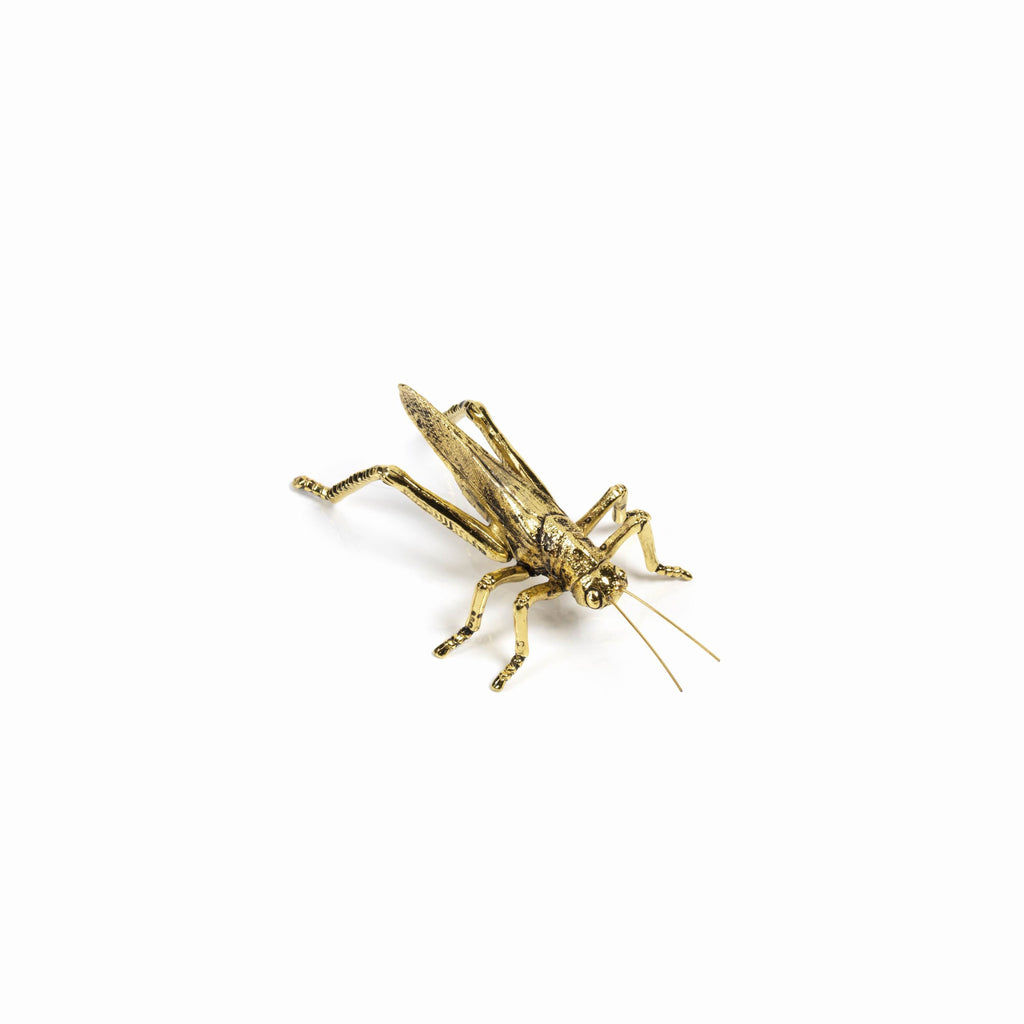 Decorative Gold Grasshopper