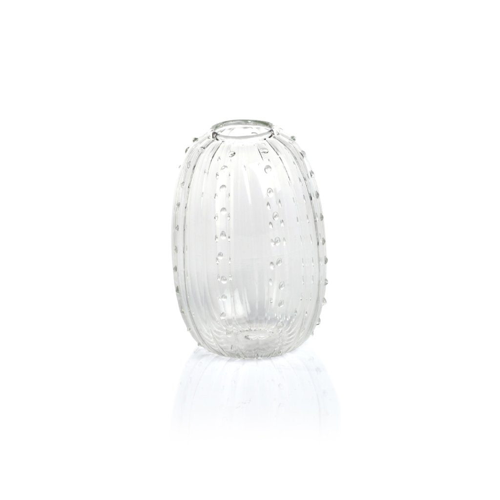 Cactus Vase - Clear - CARLYLE AVENUE