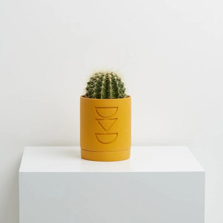 Etch Planter Golden - CARLYLE AVENUE