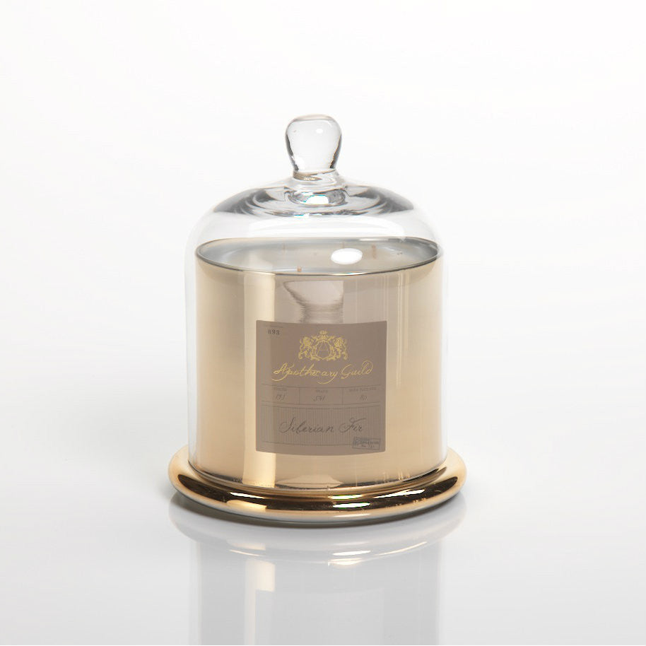 Apothecary Guild Domed Candle - Siberian Fir - Gold - CARLYLE AVENUE