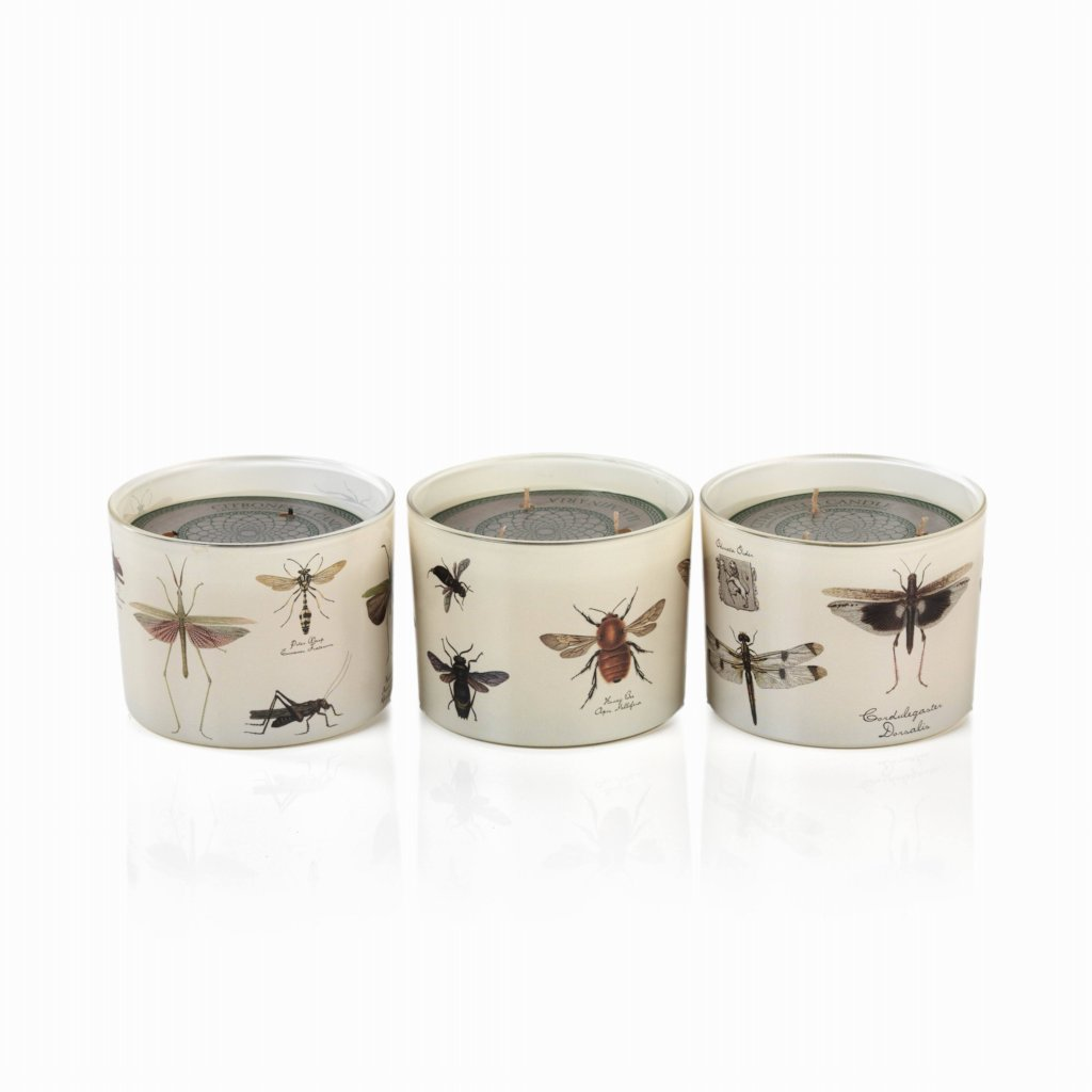Illuminaria Insect Three-Wick Citronella Candle - Set of 3 - CARLYLE AVENUE