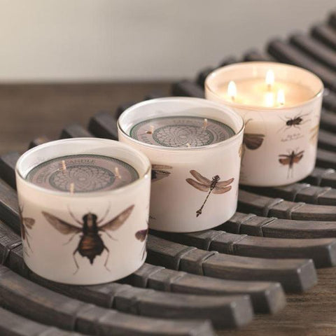 Illuminaria Insect Three-Wick Citronella Candle - Set of 3