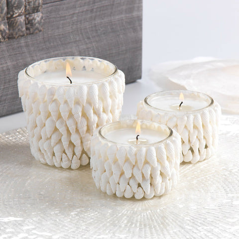 Baby Conch Scented Candle Jar