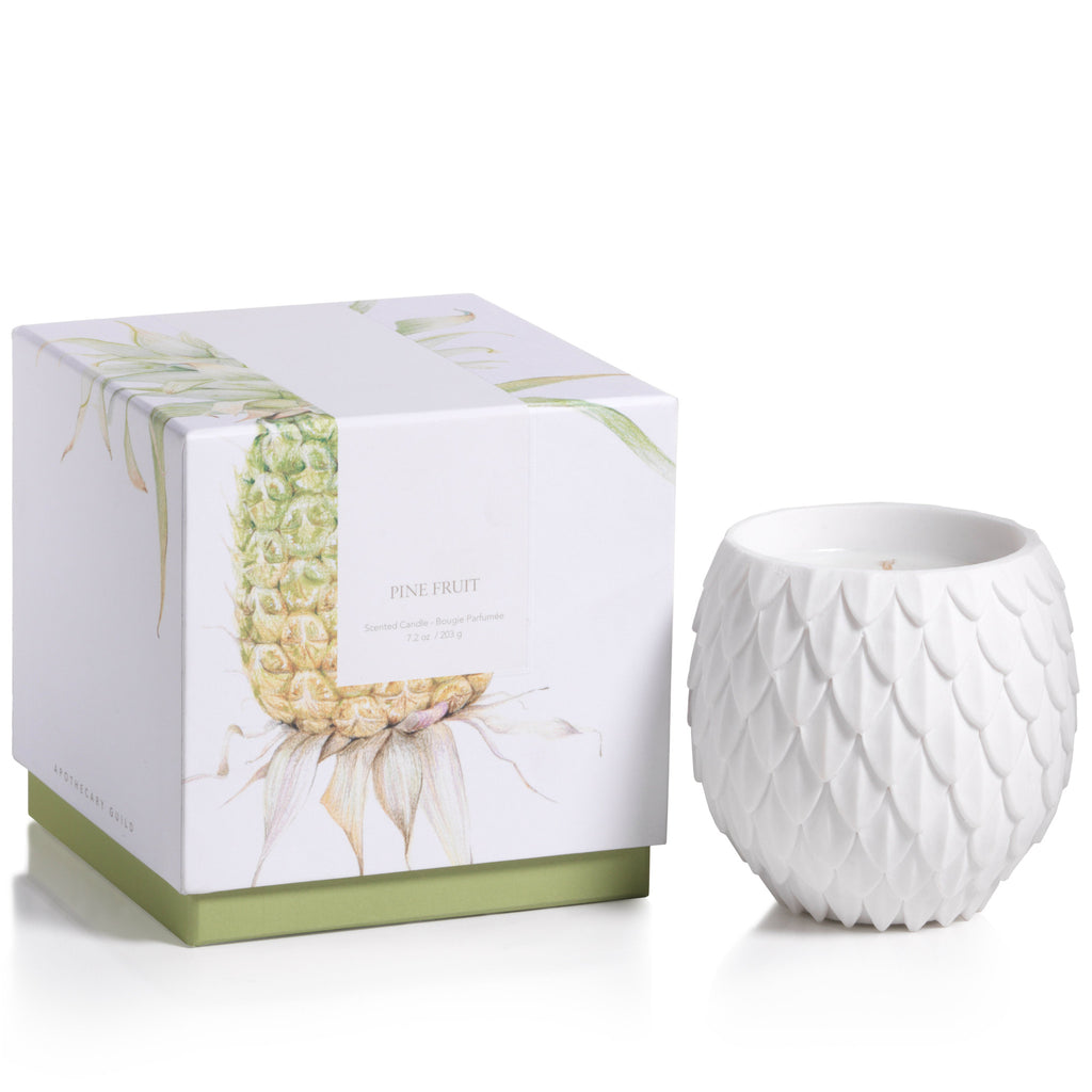 Apothecary Guild Sandstone Scented Candle - Pine Fruit - CARLYLE AVENUE