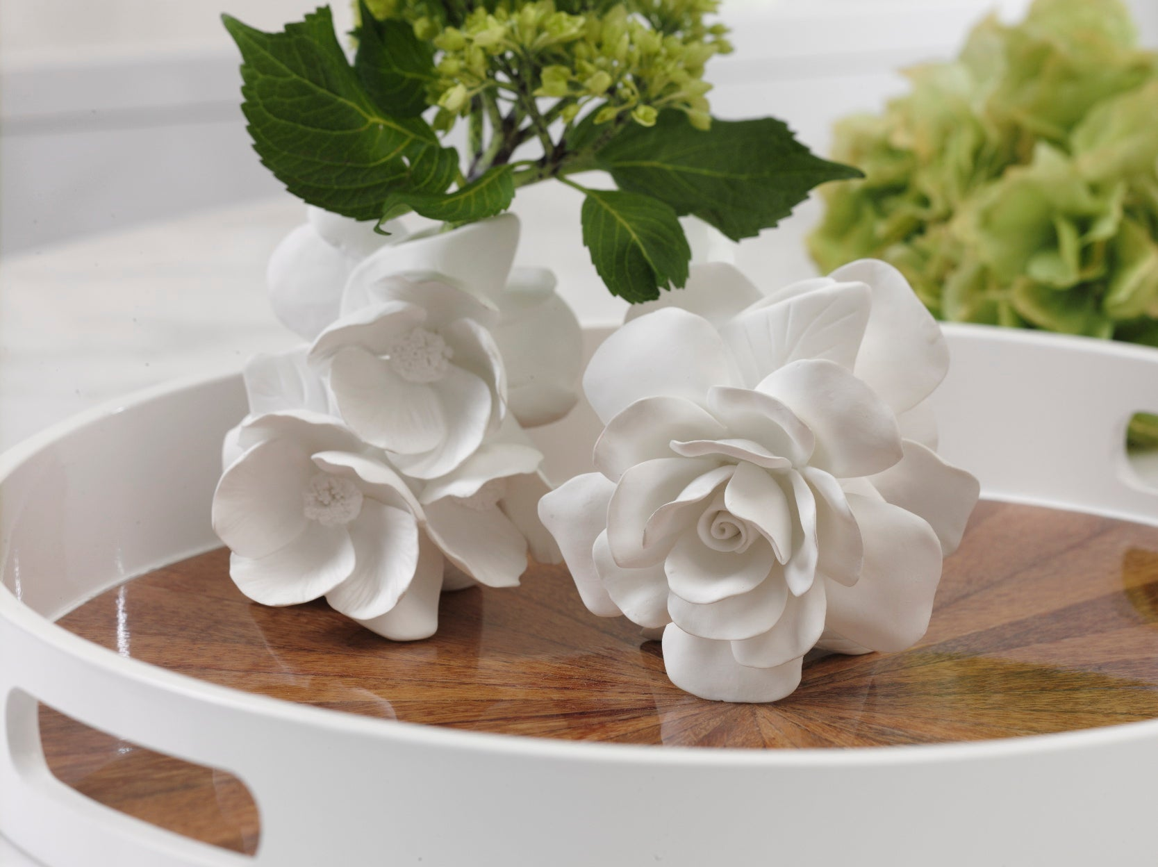 Cameo Vases - Set of 4 - CARLYLE AVENUE