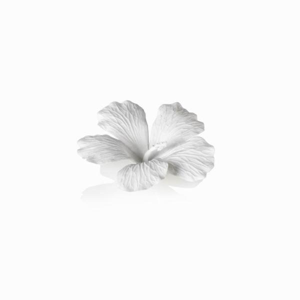 White Bone China Hibiscus Flower Wall & Table Décor