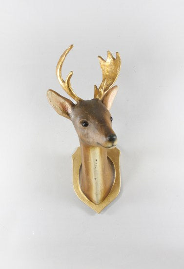 Roe Deer Trophy Mount - CARLYLE AVENUE
