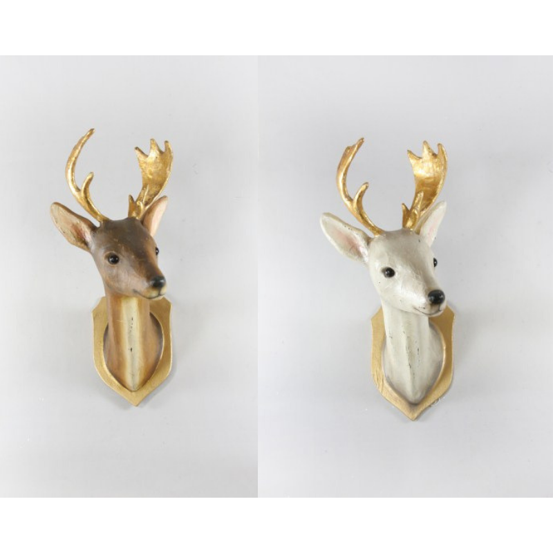 Roe Deer Trophy Mount