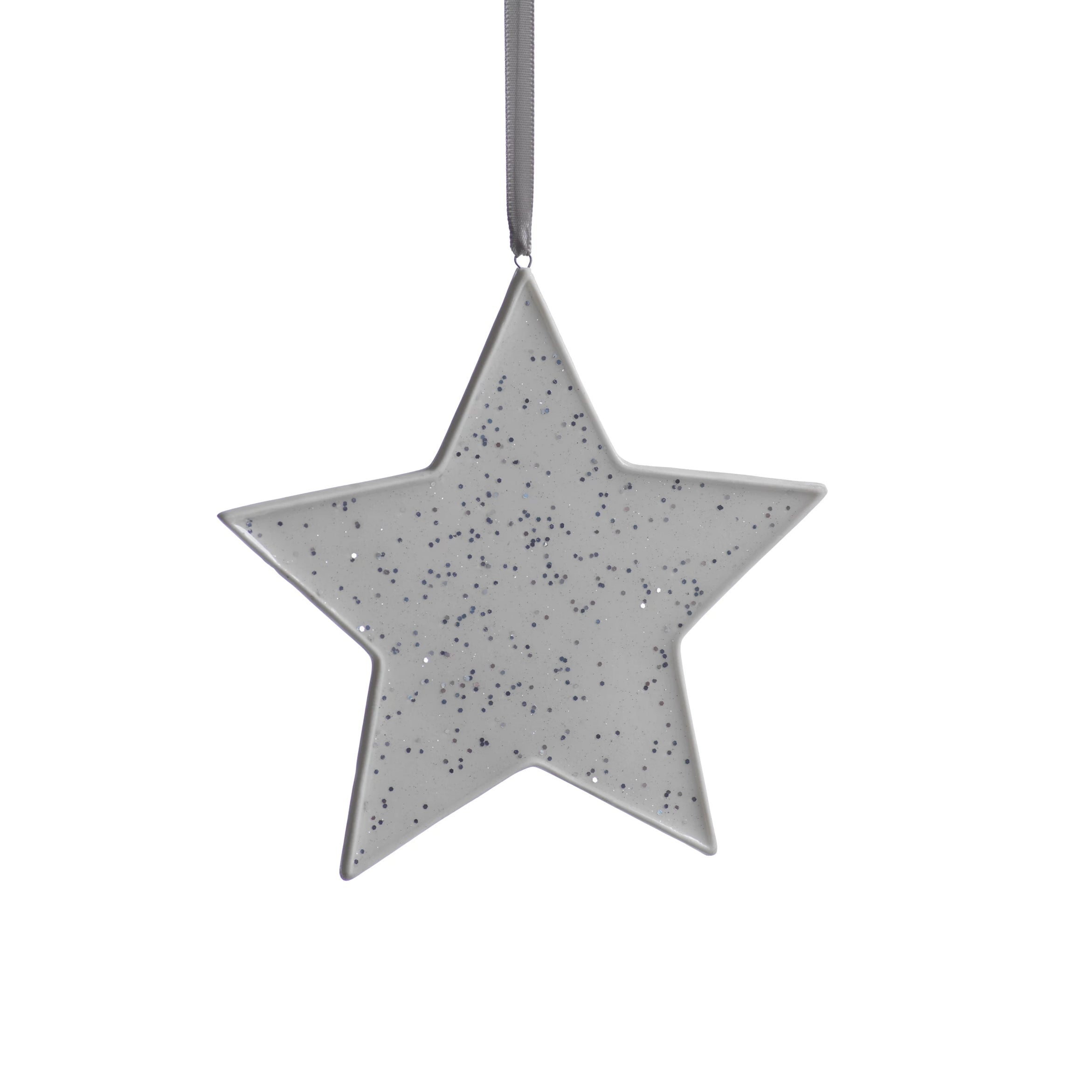 Speckled Star Ornament - Silver