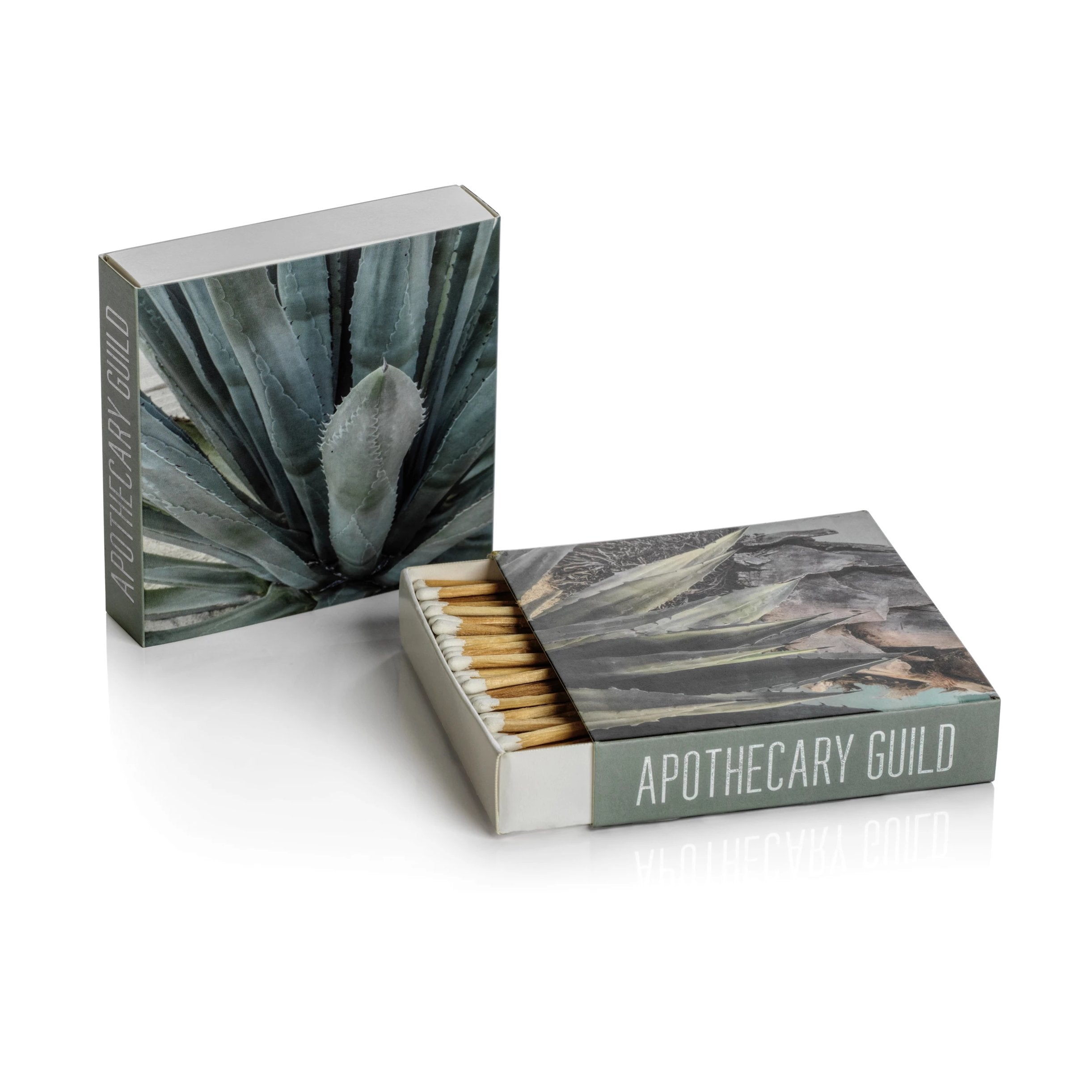 Matches - Agave - CARLYLE AVENUE
