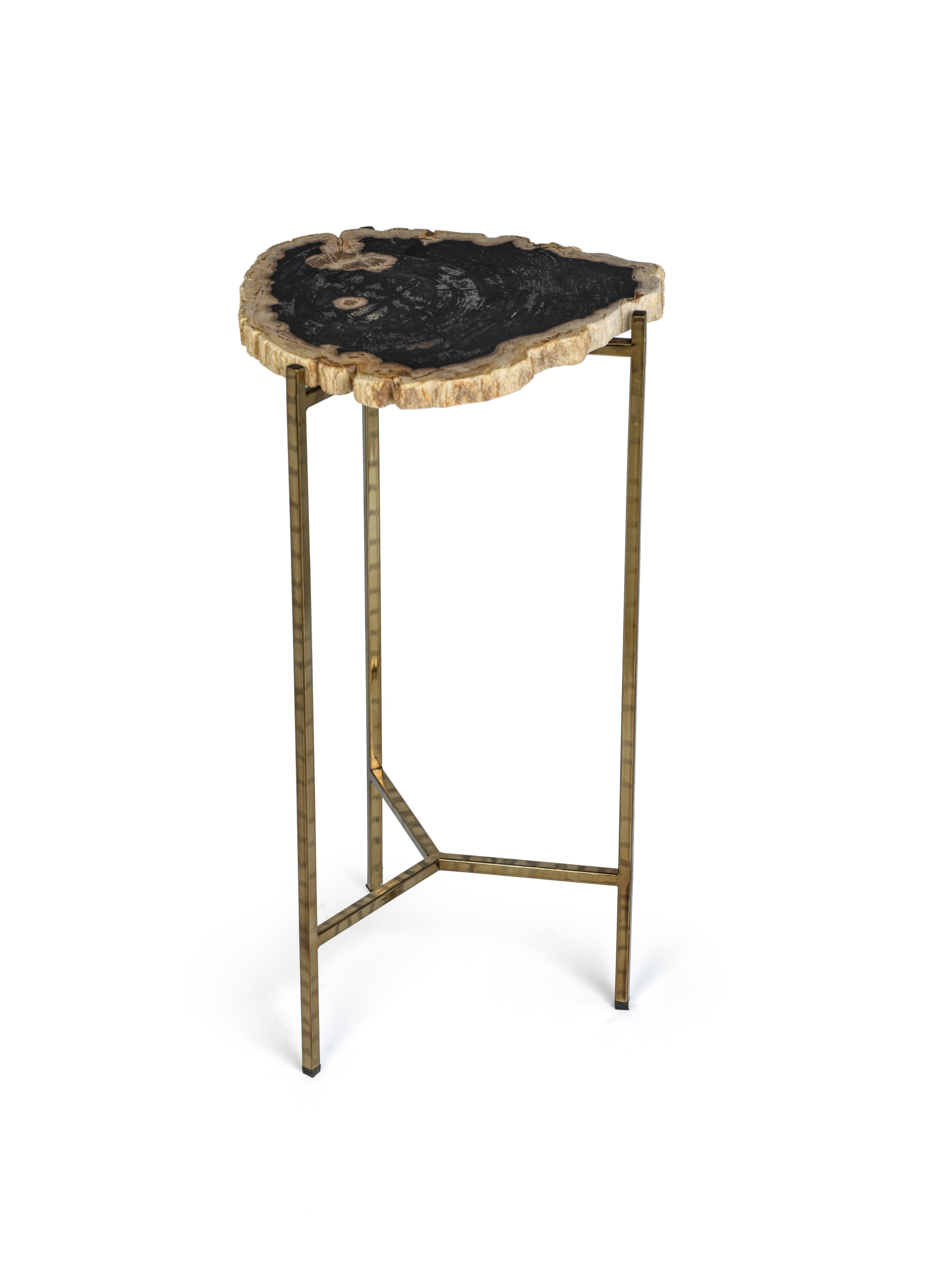 Petrified Wood Side Table - CARLYLE AVENUE