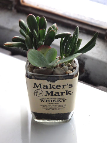 Makers Mark Whiskey Bottle Garden Succulent Planter - Bottle Only
