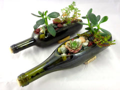 Wine Bottle Garden Succulent Complete Planter Kit - One Kit